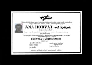 thumbnail of Ana_Horvat