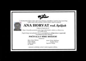 thumbnail of Ana_Horvat