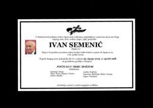thumbnail of Ivan_Semenic