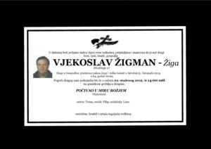 thumbnail of Vjekoslav_Zigman