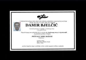 thumbnail of Damir_Bjelcic