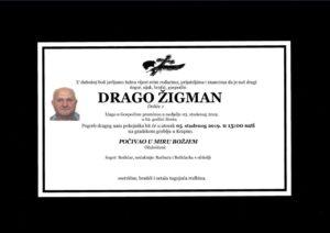 thumbnail of Drago_Zigman