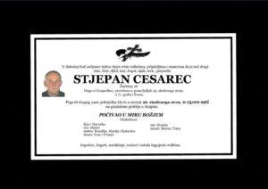 thumbnail of Stjepan_Cesarec