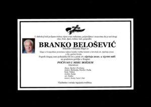 thumbnail of Branko_Belosevic