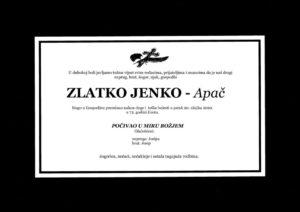 thumbnail of Zlatko_Jenko3