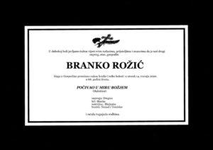 thumbnail of Branko_Rozic