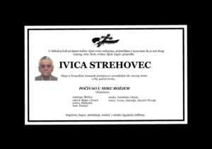 thumbnail of Ivica_Strehovec