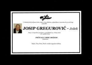 thumbnail of Josip_Gregurovic