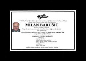 thumbnail of Milan_Barusic