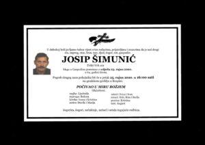 thumbnail of Josip_Simunic