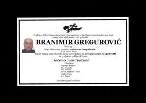thumbnail of Branimir_Gregurovic