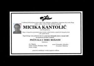 thumbnail of Micika_Kantolic