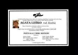 thumbnail of Agata_Lesko