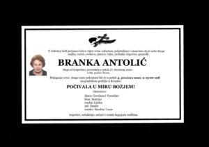 thumbnail of Branka_Antolic