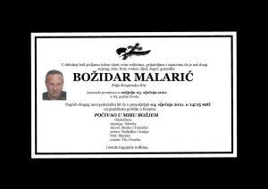 thumbnail of Bozidar_Malaric